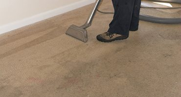Carpet Cleaning Solutions Llc